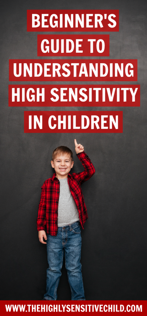 Beginners guide to understanding the highly sensitive child and high sensitivity